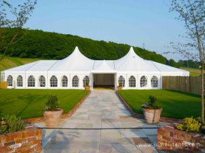 Mixed Tent for Event