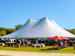 Large Pole Tent